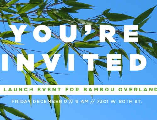 Bambou Salons & Spas Launch Event