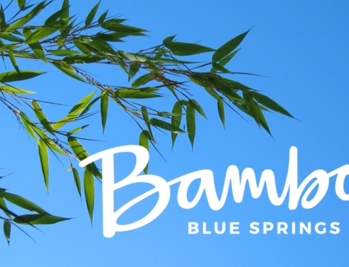 You're Invited! Bambou Blue Springs Ribbon Cutting